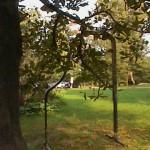 Klangtor_Woldzegarten-20_2011
