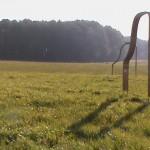 Klangtor_Woldzegarten-19_2011
