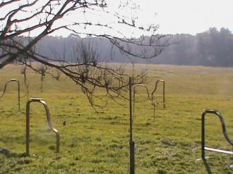 Klangtor_Woldzegarten-10_2011